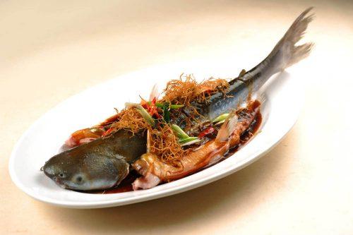 Fish 海鲜鱼类